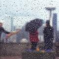 Celebration In Rain A036 by Yoshiki Nakamura