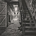 Cell Block 6 Bw by Heather Applegate