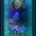 Cellophane by Darin Baker