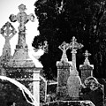 Celtic Crosses At Fuerty Cemetery Roscommon Ireland by Teresa Mucha