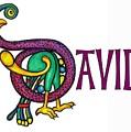 Decorative Celtic Name David by Frances Gillotti