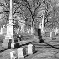 Cemetery 3 by Anita Burgermeister