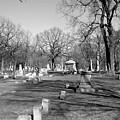 Cemetery 7 by Anita Burgermeister