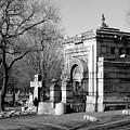 Cemetery 8 by Anita Burgermeister