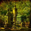 Cemetery In Charleston by Susanne Van Hulst