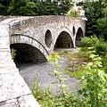 Cenarth Bridge by Richard Denyer