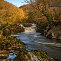 Cenarth Falls by Mark Llewellyn