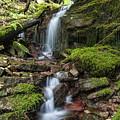 Centennial Falls by Paul DeRocker