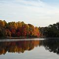 Centennial Lake Autumn - Fall Dressing by Ronald Reid