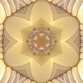 Center Star-flower by Deborah Benoit