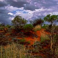 Central Australia I by Louise Fahy