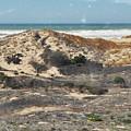 Central Coast Sand Dunes by Kyle Hanson
