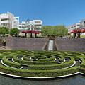 Central Garden by Michelle Choi
