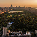 Central Park by Anthony Fields