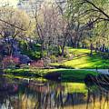 Central Park Colors by Roman Kruglov