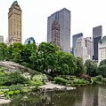 Central Park by Matt Malloy