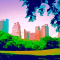 Central Park by Paul Jarvis