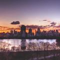 Central Park Rises by Ariane Moshayedi