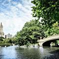 Central Park by Scott Kemper