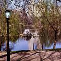 Central Park Sidewalk by Anthony C Ellis