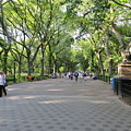 Central Park The Mall by Miguel Sella