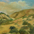 Cerillos Hills New Mexico by Phyllis Tarlow
