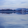 Cerknica Lake At Dawn With Snow Covered Alps In Background by Ian Middleton