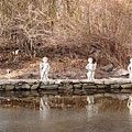 Cerubs On Icy Pond by Susan Grissom