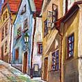 Cesky Krumlov Old Street 2 by Yuriy  Shevchuk