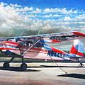 Cessna 140 by Douglas Castleman