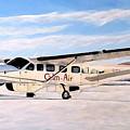 Cessna 208 Caravan by Marilyn  McNish