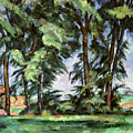 Cezanne: Trees, C1885-87 by Granger