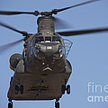 Ch-47 Chinook Flies Over Playas by Terry Moore
