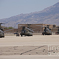 Ch-47 Chinook Helicopters On The Flight by Terry Moore