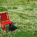 Chair In Open Field by Garry Gay