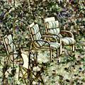 Chairs In Backyard by Jeelan Clark