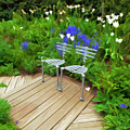 Chairs In The Garden by Mike Nellums