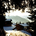 Chalet Through The Trees by Catt Kyriacou