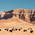 Chalk Cliffs by Todd Klassy