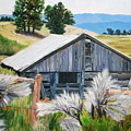 Chama Valley Barn by Jean Peace