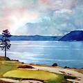 Chambers Bay 15th Hole by Scott Mulholland