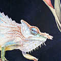 Chameleon by Irina Sztukowski