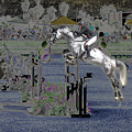 Champion Horse Jumper by Bette Levine