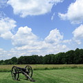 Chancellorsville Battlefield by Frank Romeo