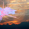 Change Of Heart  by John  McCloskey