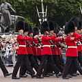 Changing Of The Guard by Timothy Johnson