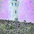 Channel Islands Lighthouse by David Millenheft