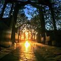 Chapel Sunset by Braden Moran