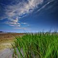 Chapin Beach by Rick Berk