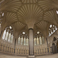 Chapter House, Wells Cathedral, Somerset Uk by Peter Barritt